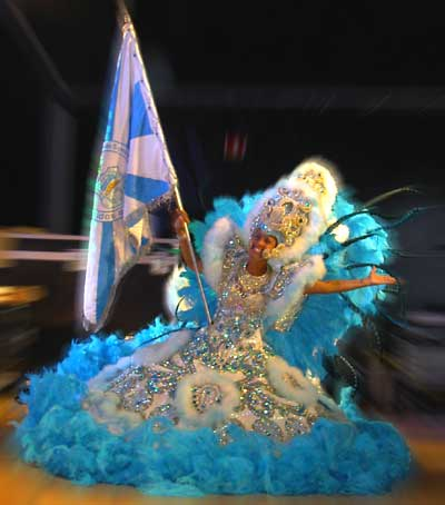 flag-carnival-rio-brazil